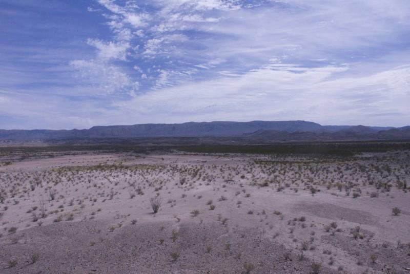 Big Bend paysage